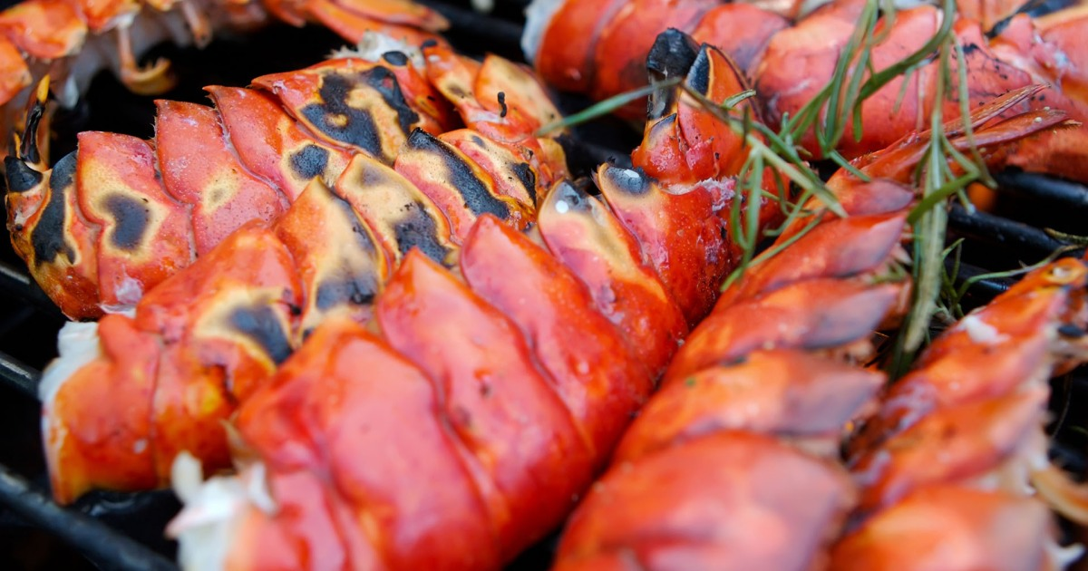 Alternative Grilling Options to Spice Up Your BBQs and Gatherings