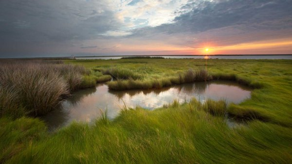 Smith Island on the eastern shore of Maryland.