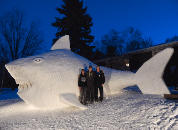 Photo of snow shark is a video screen grab