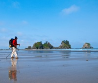 Shi Shi Beach at Point of Arches, Olympic National Park, Washington