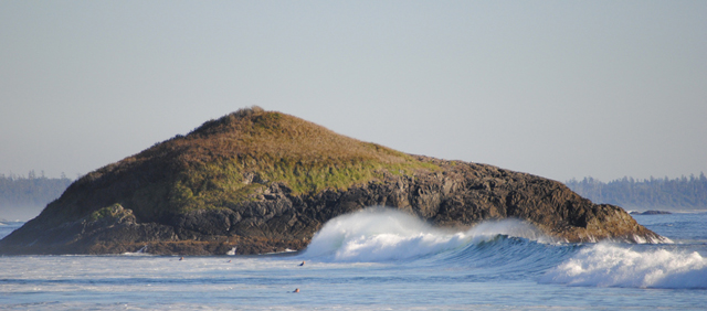 A few locals catch the swell in Pacific Rim National Park Reserve, just a few minutes from downtown Tofino; photo courtesy of Keith Jellis/Flickr.