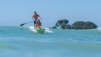 Paddle Healthy Supplements SUP