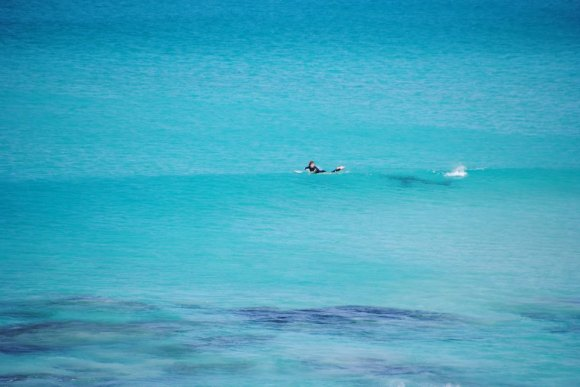 Surfer's close call with shark surfaces in photos