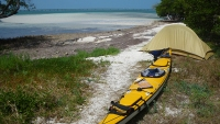 Laying low on the Molasses Key. Photo by Michael Daugherty