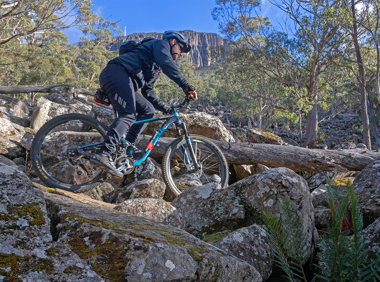 Mountain biking on the North South Track on Mt Wellington