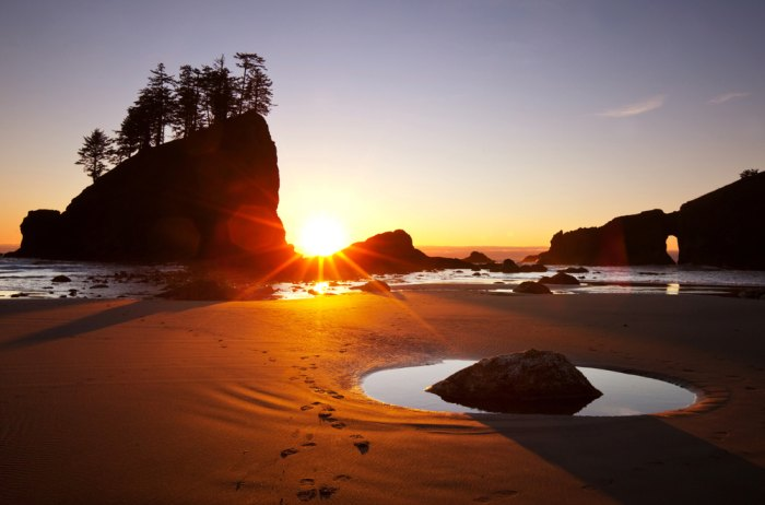 The desolate beaches of Olympic National Park are a dream for kids and parents alike. Photo courtesy of Shutterstock.com