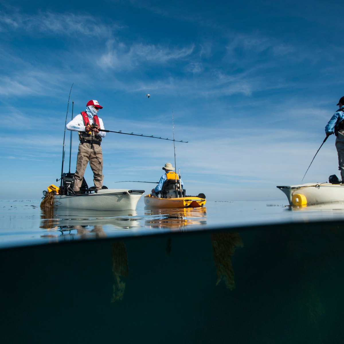 Download What You Need To Know Before Kayak Fishing
