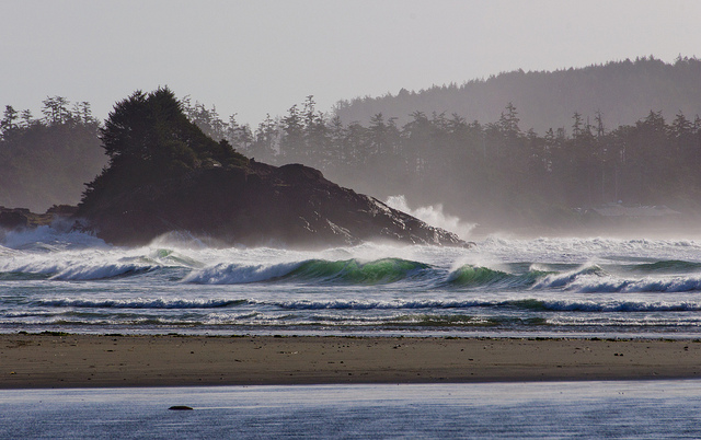 Early morning in Tofino. Photo: Colin Knowles