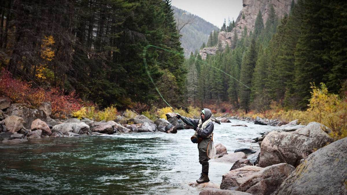 the 17 best rivers and lakes to go fly fishing in montana