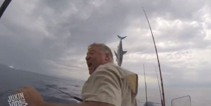 A mako shark very nearly jumped into the boat of two fishermen off Orange County, California. Photo: Screen grab