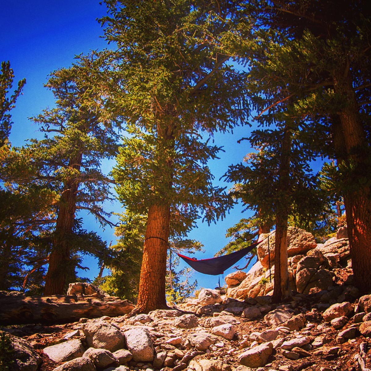 Strodel says it's easy to lose half a day in the Eastern Sierras once you slip into a hammock. Courtesy of @HammockLiving