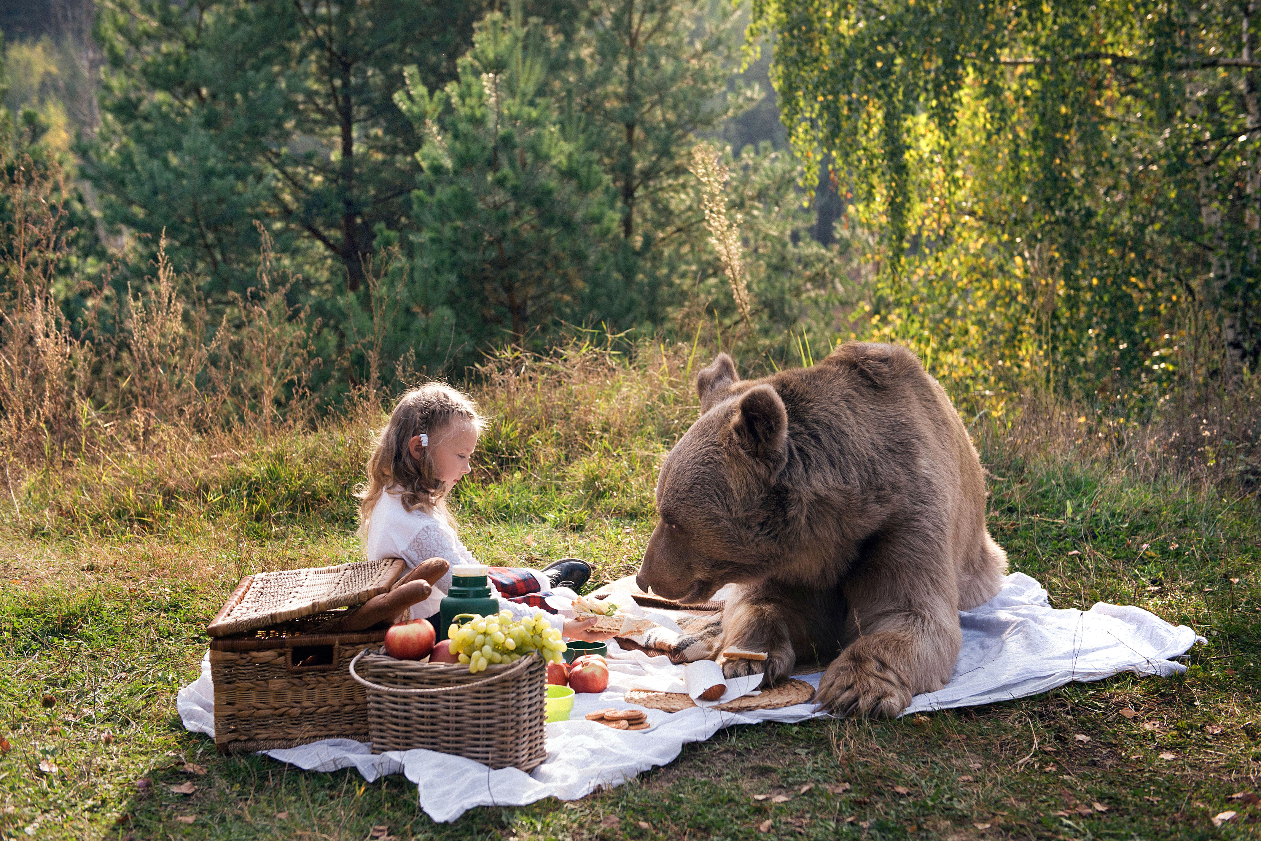 The grizzly bear is not interested in meat since it grew up as a vegetarian. Photo: Caters News
