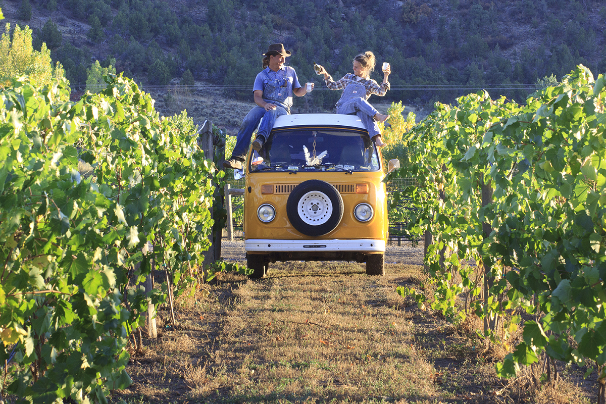 Campbell and Goldfarb enjoying the fruits of their labor (literally). Photo: Idle Theory Bus