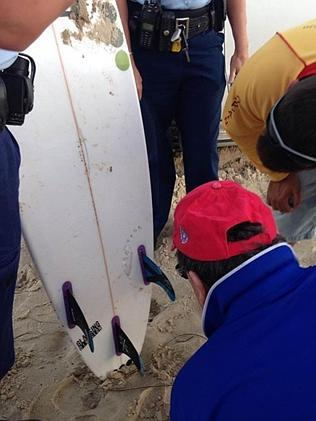 The surfboard of the shark attack victim shows teeth marks