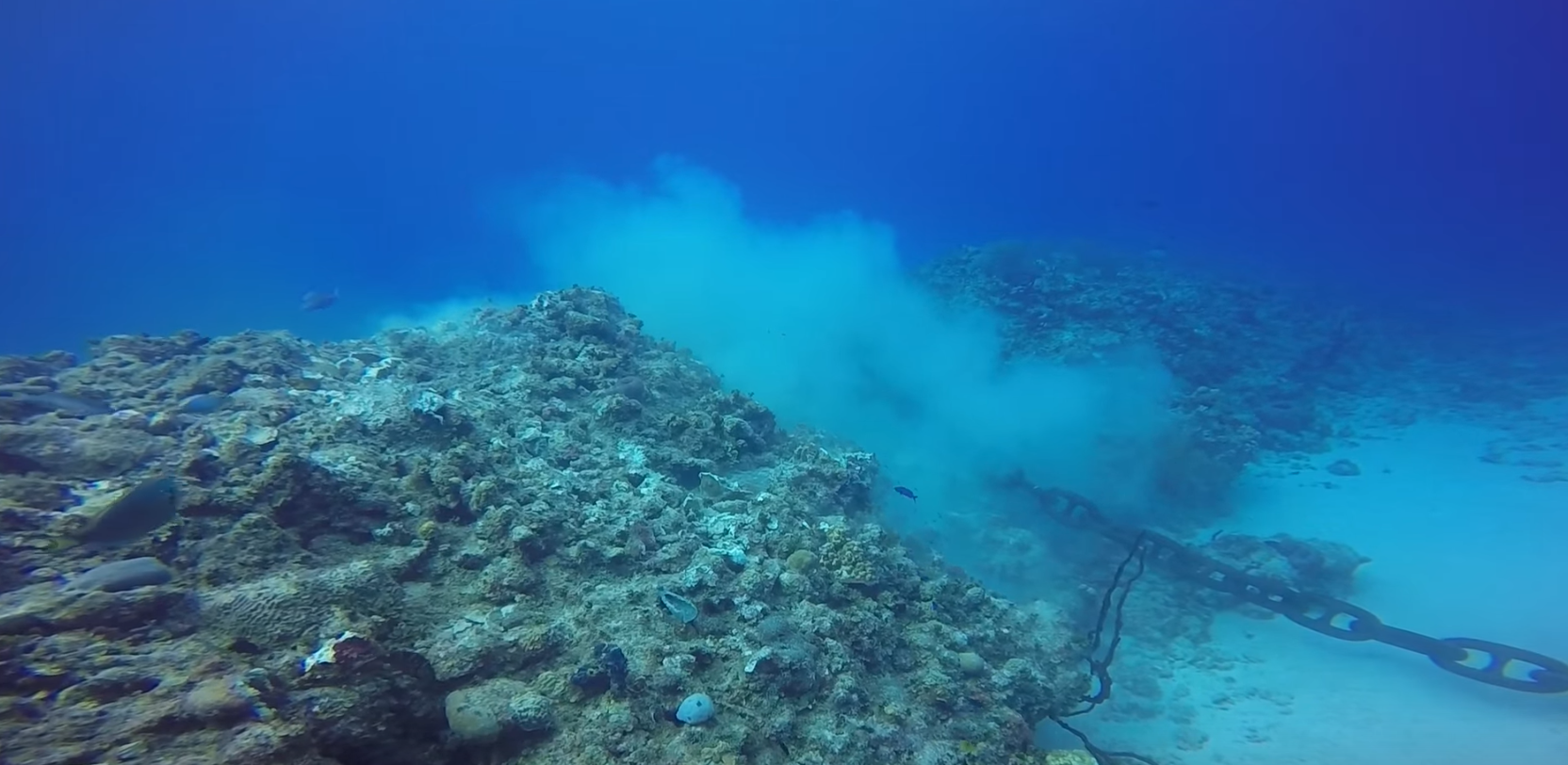 Cruise ship destroys coral reef