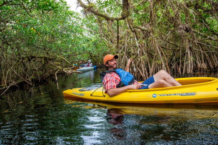 Kayaking in the Everglades—it can get a little tricky. Photo: Shutterject/Flickr