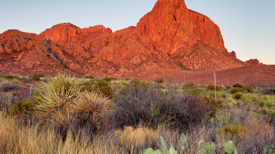 Early morning light on the Chisos mountains in Big Bend National Park