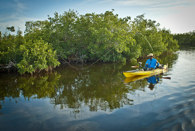 AKE YOUR TIME: Florida's Calusa Blueway offers year-round paddling, and fishing.