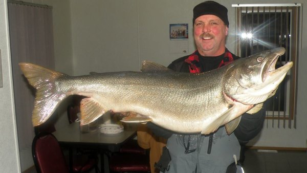 Barry Larson shows off his 38-pound lake trout, which just missed the ice fishing world record.