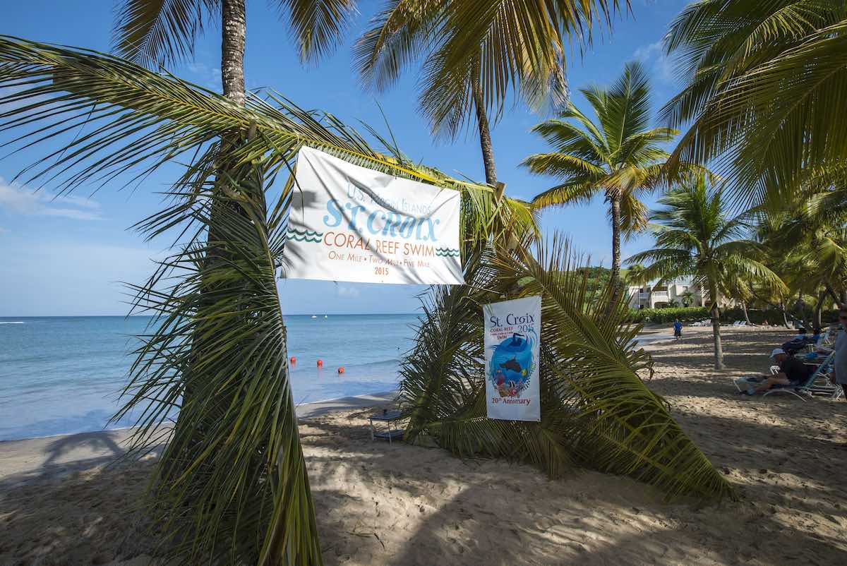 There is no prettier starting gate in open water swimming. Photo St Croix Coral Reef Swim