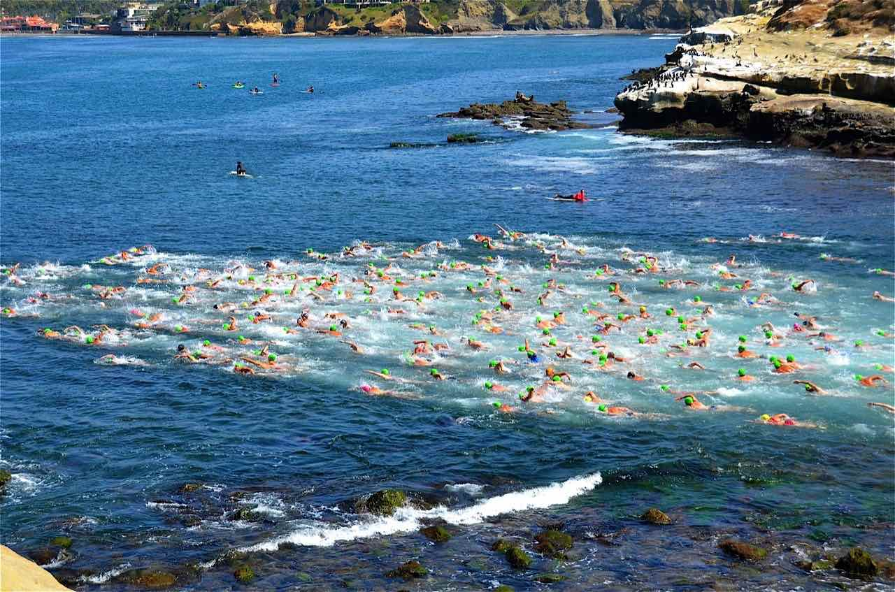 The contestants head out through the cove. Photo by La Jolla Rough Water Swim