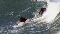 A southern right whale and surfer nearly collide on same wave.