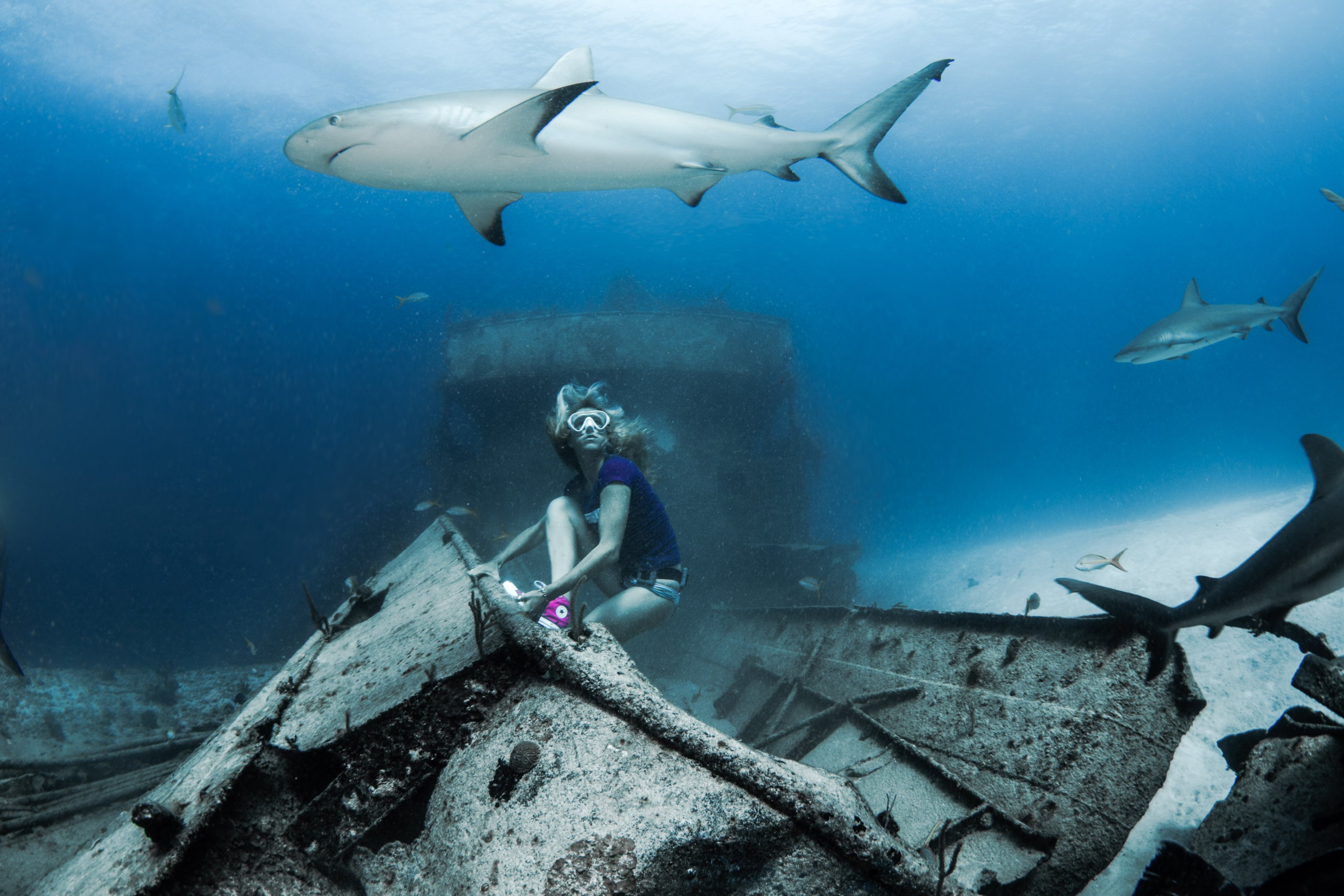 Local conservationist freedives, strips naked for shark