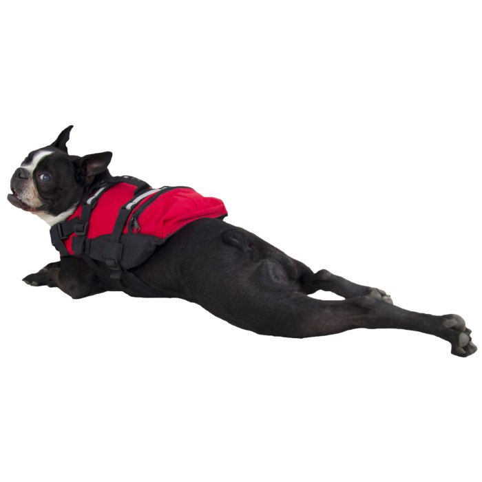 CFD's, like this one by NRS, are adjustable in multiple areas to fit pooches of all shapes and sizes.   Photo courtesy of NRS.com