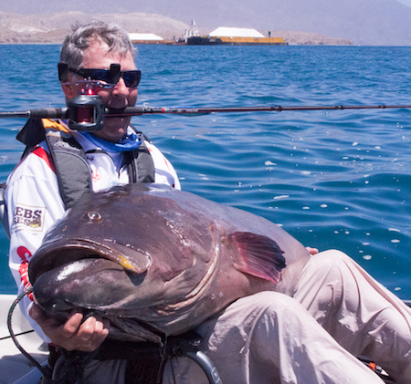 Mariani was using his heavy saltwater bass outfit, a Phenix M1 Inshore Series rod with a prototype Okuma Komodo baitcaster spooled with 65-pound PowerPro braid plus a 35-pound Seaguar Flurocarbon leader.