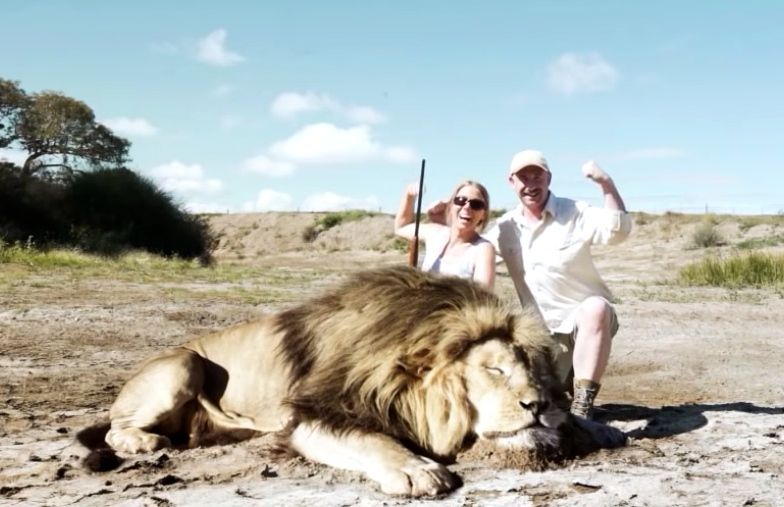 Trophy hunters pose with dead lion in video from South Africa deemed fake.