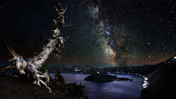 Tree and Milkway Over Crater Lake