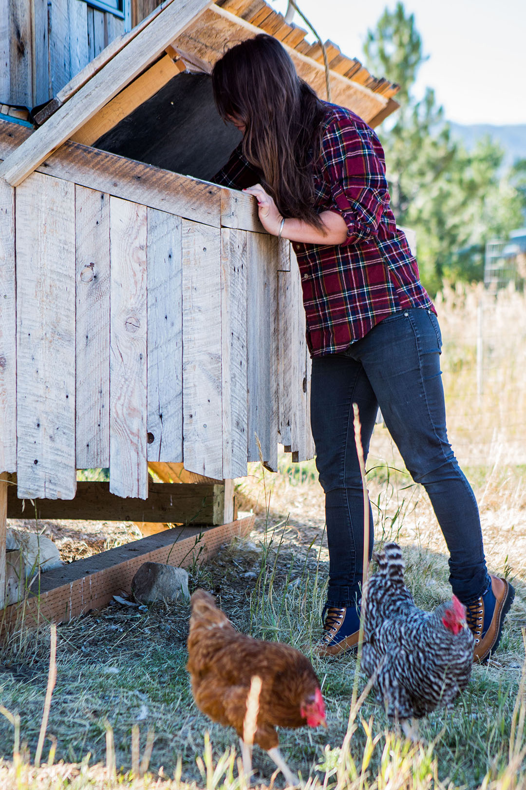 Becca Skinner tends to some fowl friends at home in Bozeman, Montana. Photo: Becca Skinner.