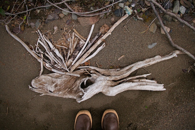 Driftwood left by the Stikine River at high water.