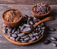 Whole dried cacao beans alongside cacao nibs and cocoa powder