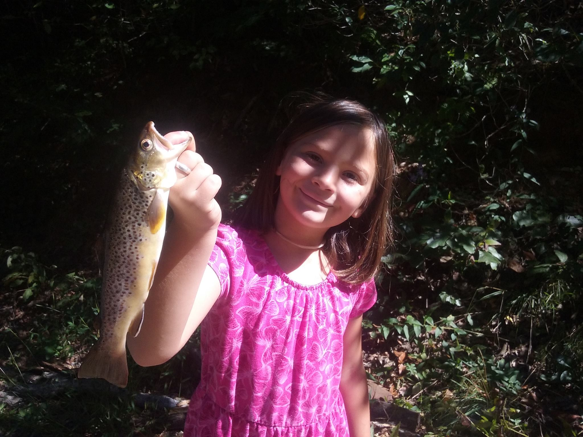 Haden Rhea Serres, 7, shows off her prize while fishing with her dad, Jason Serres, in a western North Carolina creek. Photo: Courtesy of Jason Serres
