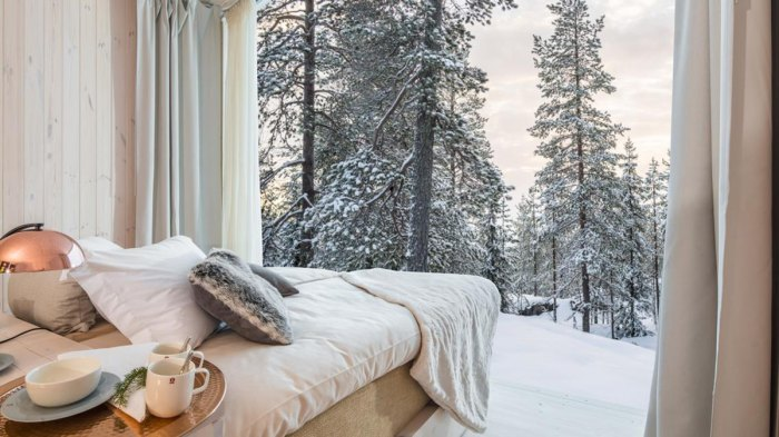 Really can't think of a view any better than this. Photo: Courtesy of Arctic Treehouse Hotel