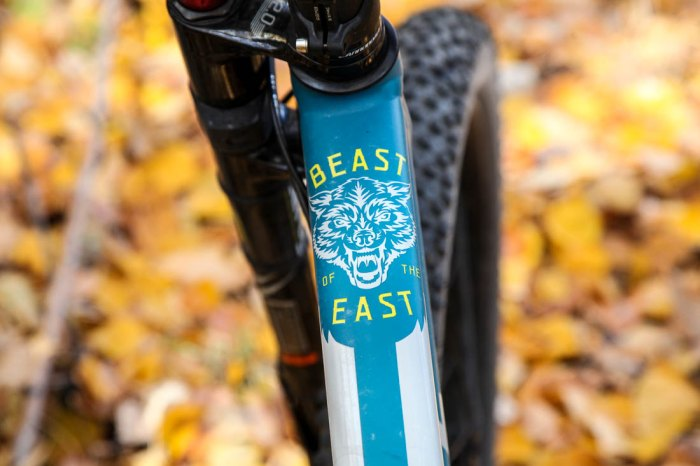 cannondale-beast-8
