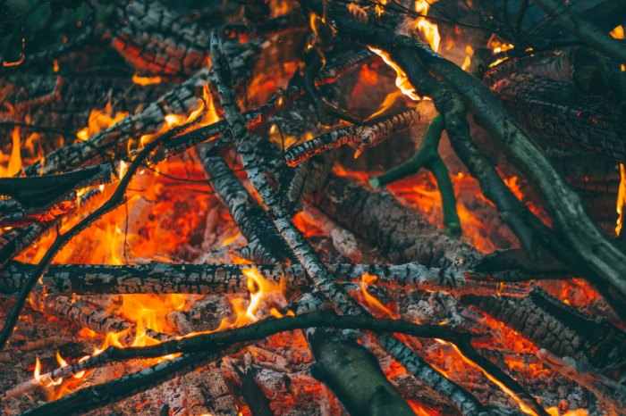 The snap, crackle and pop of some good firewood. Photo: Courtesy of Luke Porter/Unsplash