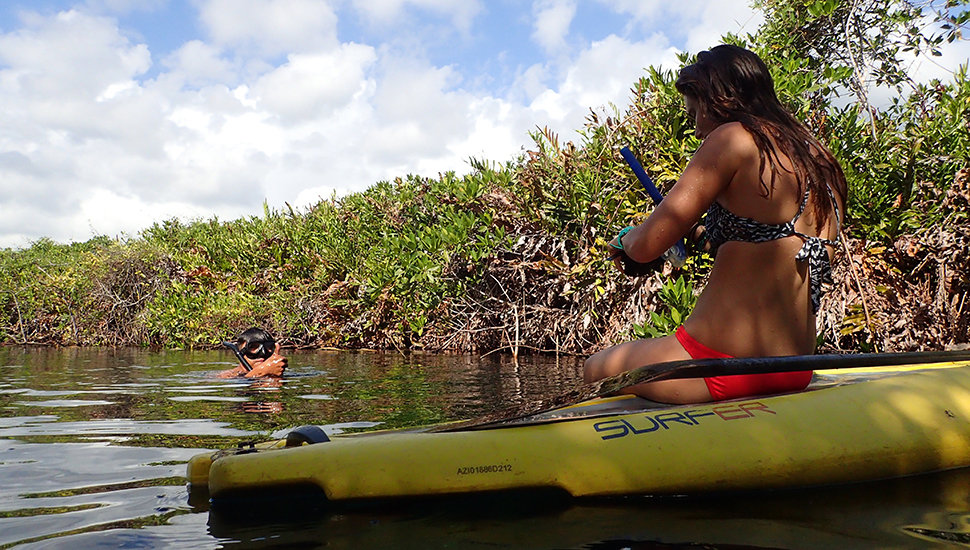 SUP and snorkeling go together like peanut butter and jelly. Photo: Jonathan Kemnitz