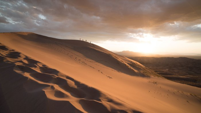 This winter, add the desert to your list of must-see destinations. Photo: Courtesy of Joshua Sortino/Unsplash