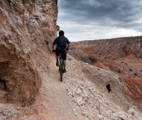 Cyclists flock to New Mexico for the state's mountain biking.