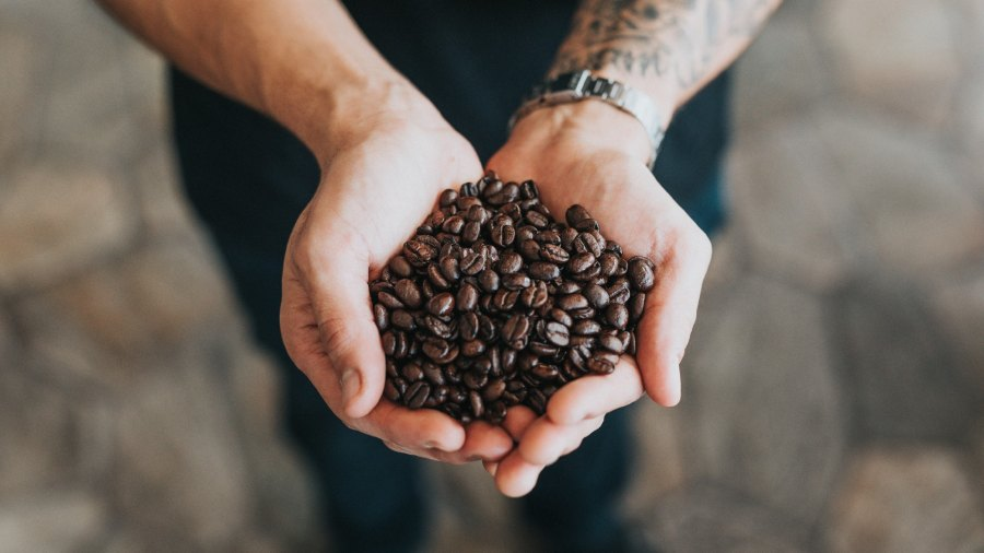 Man holding coffee beans in hands