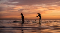 Standup paddling near Dana Point, California.
