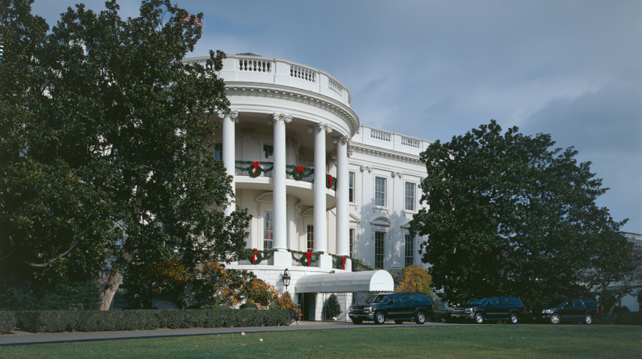 The Jackson Magnolia on the West Side of the White House