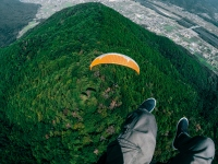 Man Skydiving Above Forest