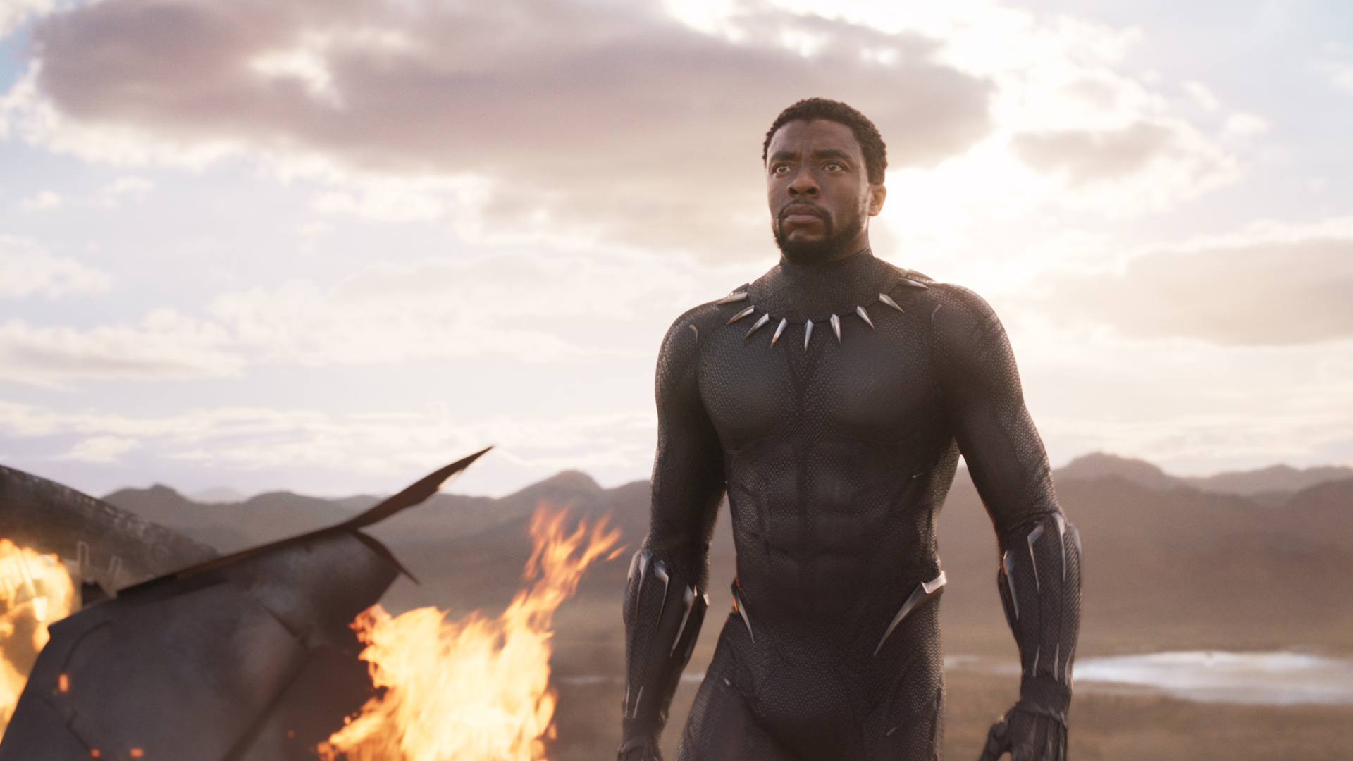 Inside Chadwick Boseman S Martial Arts Training For Black Panther