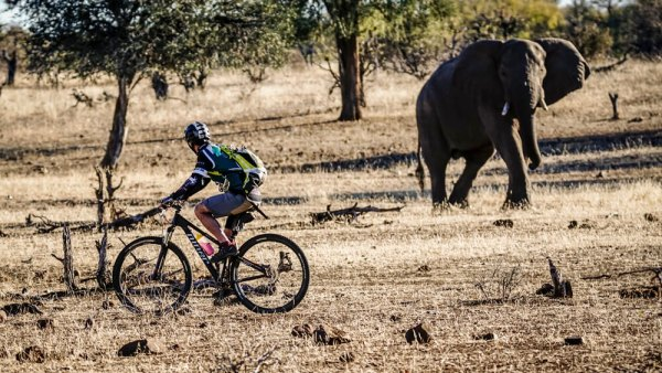 Tour de Tuli multi-stage bike event in Africa