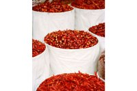 Red Chili Peppers in Large Pails