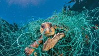 National Geographic Launches 'Planet or Plastic?' Campaign to Combat Pollution Epidemic
