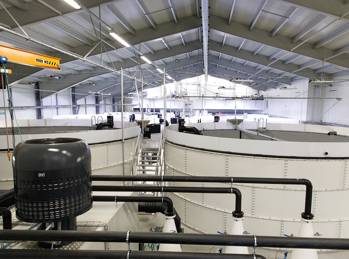 A typical salmon farming facility in Norway